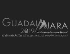 Convención Guadalajara 2019